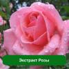 Гель-скатка с розой BIOAQVA Освежающая 120 г